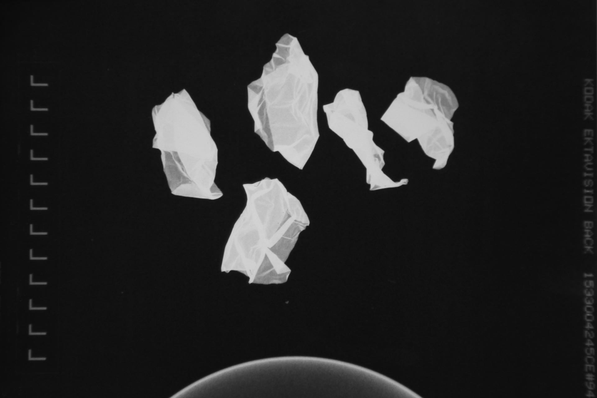 The Dopamine Collective – l'artiste universel…. expériences dans le réel)